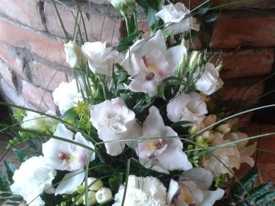 kwiaty 52