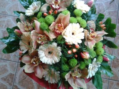 kwiaty 51
