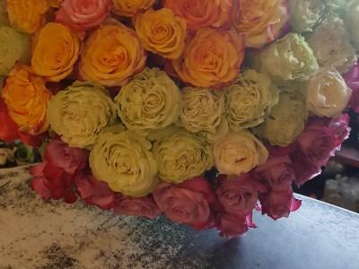 kwiaty 36