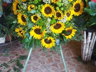 kwiaty 24